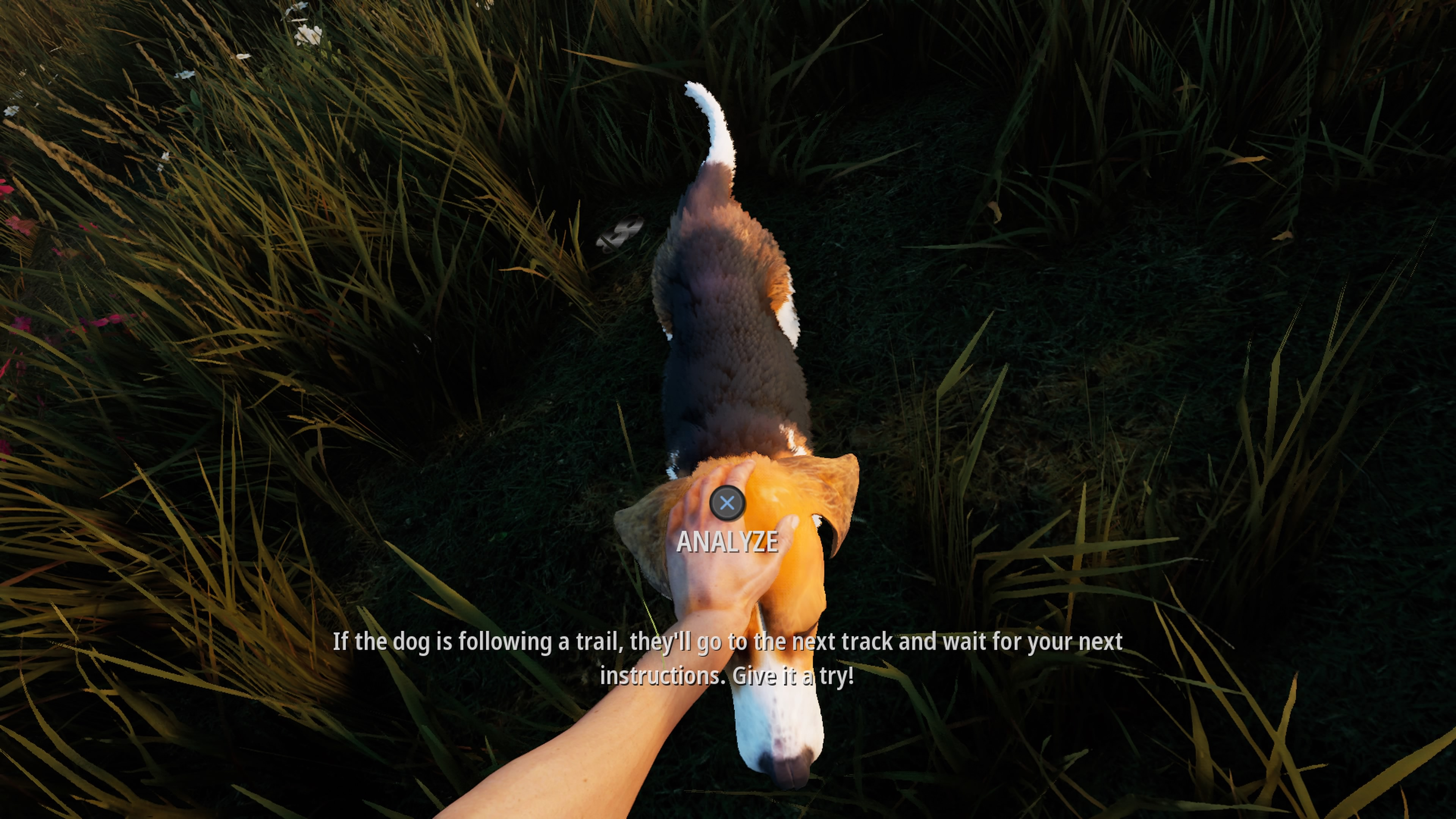 Hunting Simulator 2_20200622141032