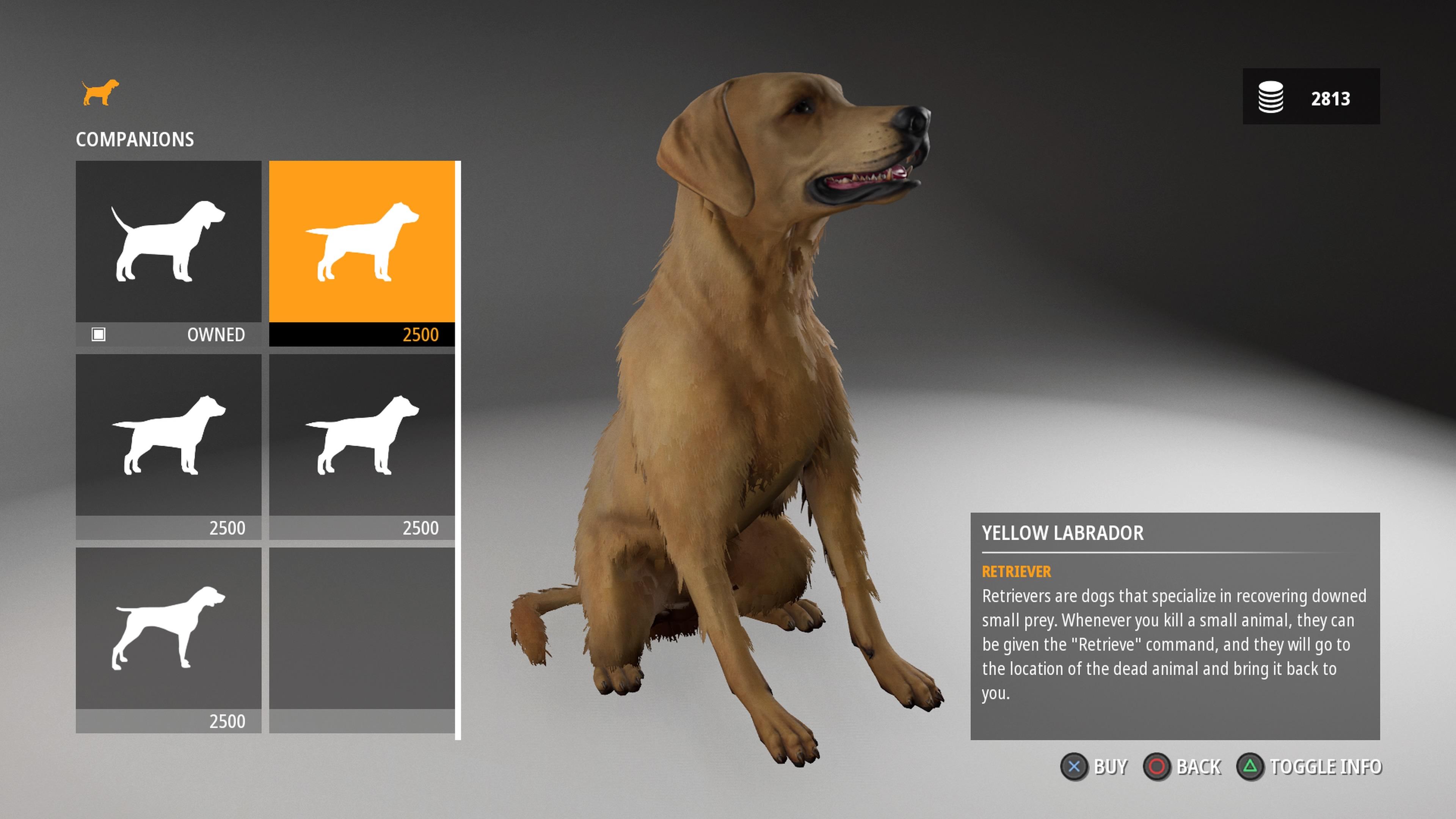 Hunting Simulator 2_20200624090629