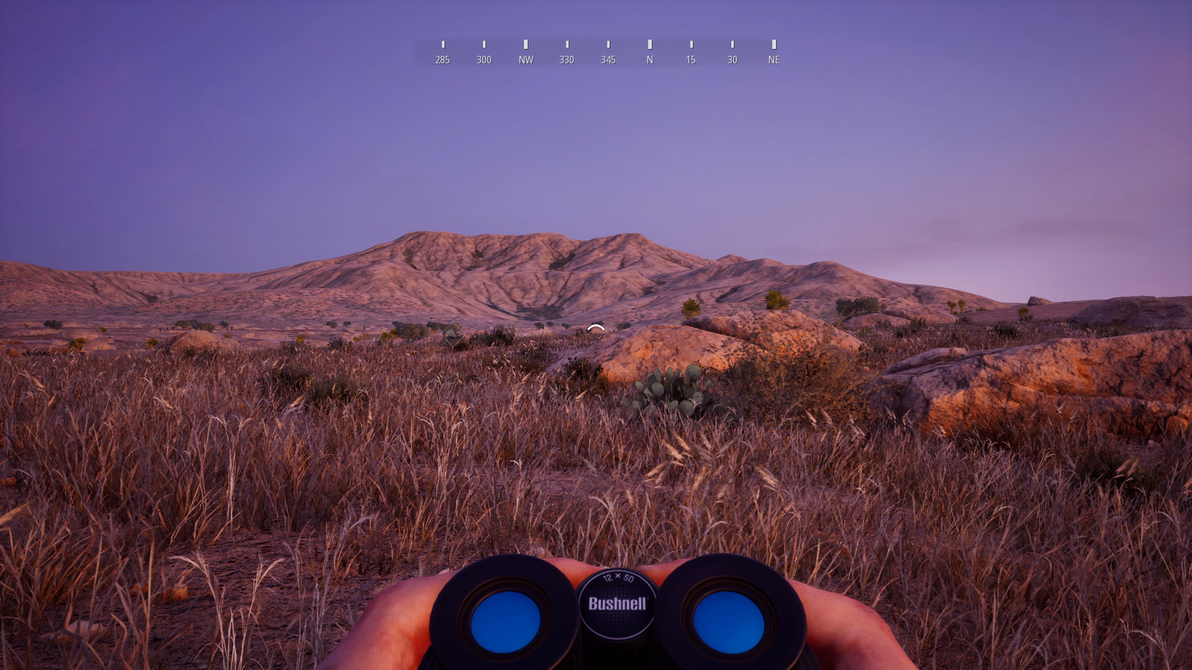 Hunting Simulator 2_20200624114609
