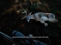 Hunting Simulator 2_20200622141450