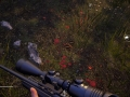 Hunting Simulator 2_20200623161427