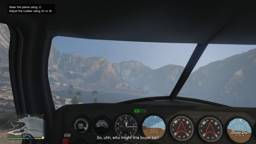 First Person Pilot View
